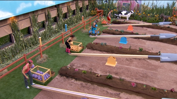 Big Brother 2014 Spoilers – Episode 36 Preview 2