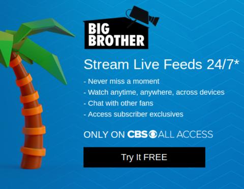 Big Brother Live Feeds